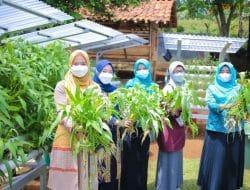 Menjelang Penilaian Lomba P2WKSS di Jawa Barat, Begini Arahan Ketua TP PKK Kota Bogor